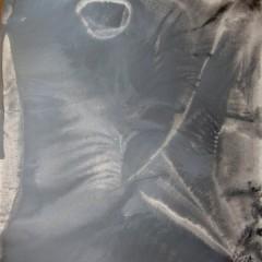 Dotyk 16, papier, akryl, 50 cm x 32,5 cm, 2012